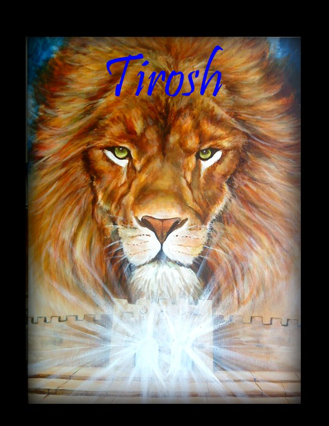 Titled : Lion of Judah